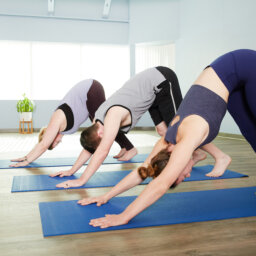Three yoga students--two women and a man--demonstrate downward facing dog on blue yoga mats.