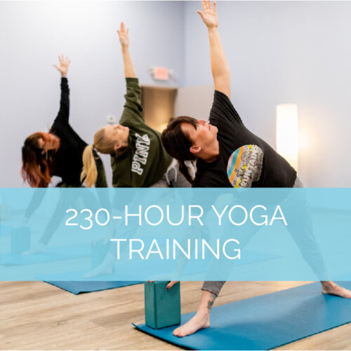 230-HOUR YOGA TEACHER TRAINING